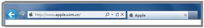 网站域名在浏览器地址栏里被加粗显示